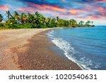 sandy sea coast with palm tree.... | Shutterstock . vector #1020540631