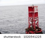 sea lions on a buoy | Shutterstock . vector #1020541225