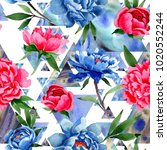 wildflower red and blue peonies ...   Shutterstock . vector #1020552244