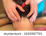 macro close up of hands... | Shutterstock . vector #1020587701