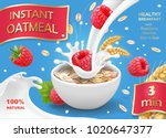 instant oatmeals oat flakes... | Shutterstock .eps vector #1020647377