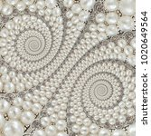 pearls and diamonds jewels... | Shutterstock . vector #1020649564