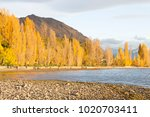 scenic morning view by the...   Shutterstock . vector #1020703411