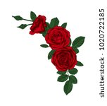 beautiful bouquet with red... | Shutterstock . vector #1020722185