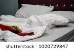 wrinkle messy blanket on bed in ... | Shutterstock . vector #1020729847