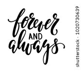 forever and always hand drawn... | Shutterstock . vector #1020730639