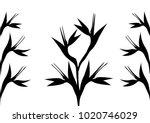 black  bird of paradise flowers ... | Shutterstock .eps vector #1020746029