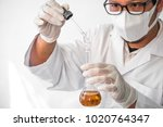 young laboratory assistant... | Shutterstock . vector #1020764347