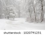 winter landscape with a pond ... | Shutterstock . vector #1020791251