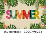 hello summer brand texture with ... | Shutterstock .eps vector #1020795235
