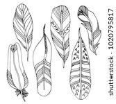 hand drawn fancy feathers.... | Shutterstock .eps vector #1020795817