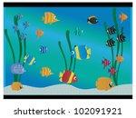 aquarium   Shutterstock .eps vector #102091921