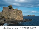 catania  sicily  italy   5th of ... | Shutterstock . vector #1020922489
