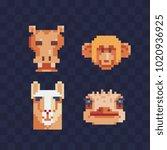 safari animal head flat pixel... | Shutterstock .eps vector #1020936925