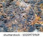 corroded white metal background.... | Shutterstock . vector #1020973969