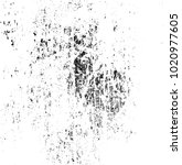 scratch grunge urban background....   Shutterstock .eps vector #1020977605