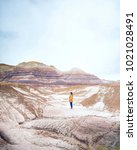 Small photo of A young woman takes in the breathtaking landscape of Arizona's painted desert.