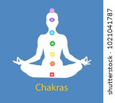 female body in lotus yoga asana ... | Shutterstock .eps vector #1021041787