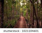 The Sundarbans  Khulna ...