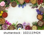 medicinal herb and flower... | Shutterstock . vector #1021119424