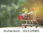 coins in shopping cart. concept ...   Shutterstock . vector #1021139881