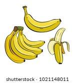 set of yellow bananas. vector... | Shutterstock .eps vector #1021148011