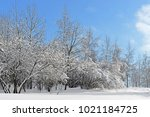 snow covered moscow. mitino... | Shutterstock . vector #1021184725