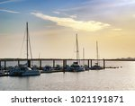 catamarans in the port of el... | Shutterstock . vector #1021191871