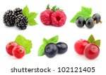 ripe berries in closeup | Shutterstock . vector #102121405