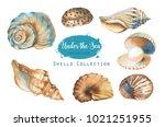hand drawn watercolor... | Shutterstock . vector #1021251955