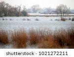a canal vessel sailing an... | Shutterstock . vector #1021272211