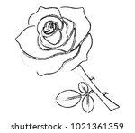 black chalk rose on white...   Shutterstock .eps vector #1021361359