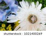 diamond engagement ring | Shutterstock . vector #1021400269