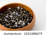job's tears   coix lachryma... | Shutterstock . vector #1021488679