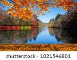 the beautiful maple season at... | Shutterstock . vector #1021546801