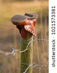 Small photo of An abandoned boot, left on a fencepost for some reason, in the countryside.