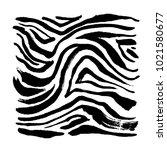 zebra print   hand drawn... | Shutterstock .eps vector #1021580677