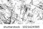 grainy black and white distress ... | Shutterstock .eps vector #1021624585