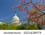 us capitol building in spring...   Shutterstock . vector #1021638979