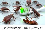 cockroaches nibble a toothbrush ... | Shutterstock . vector #1021669975