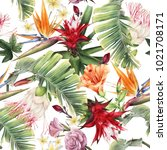 seamless floral pattern with... | Shutterstock . vector #1021708171