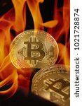 bitcoin is a virtual currency ... | Shutterstock . vector #1021728874