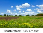 Green meadow and cloudy blue sky - stock photo