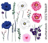 set of summer wild  floral... | Shutterstock .eps vector #1021786669