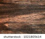 wood surface of ebony eben... | Shutterstock . vector #1021805614