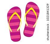 flip flops isolate on a white... | Shutterstock .eps vector #1021841329