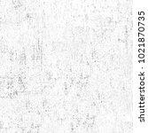 texture of dust  spots  lines ... | Shutterstock . vector #1021870735