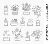 set of houseplants icons in... | Shutterstock .eps vector #1021893865