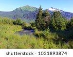 Wilderness Landscape Of...