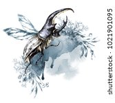 watercolor rhinoceros beetle... | Shutterstock . vector #1021901095